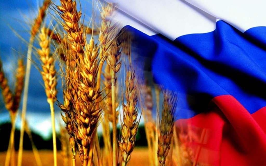 Положение на зерновом рынке.